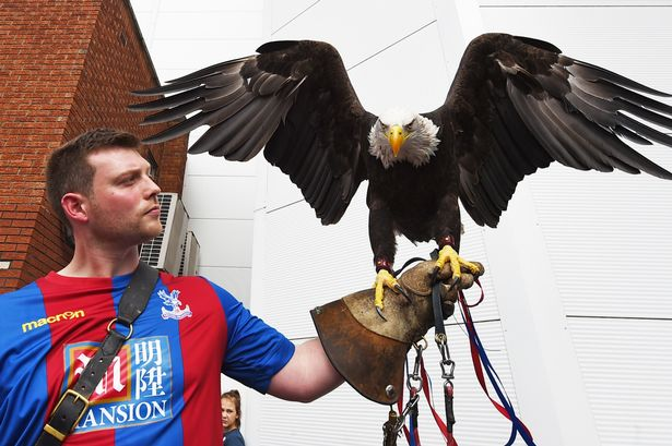 Crystal Palace - The Eagles